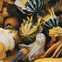 Gourds-2