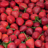 strawberries-2